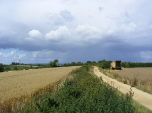 Photo of the stretch of the Cotswold Way that will be part of the HU5K route (Photo: Steve Green Photography)